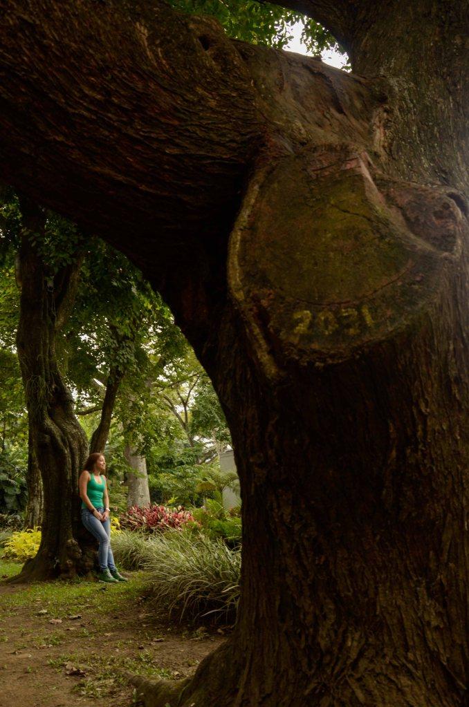 Estudios fotograficos medellin estudios fotograficos de for Bodas jardin botanico medellin